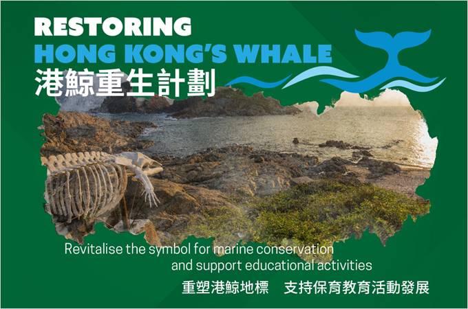 eConnect: Saving Baby Whale | Free Speech in Universities | Notebook Roadshow | Spend Now, Tax Later? | 認識腦科疾病 – 中風及柏金遜症 | 央行數字貨幣時代的來臨